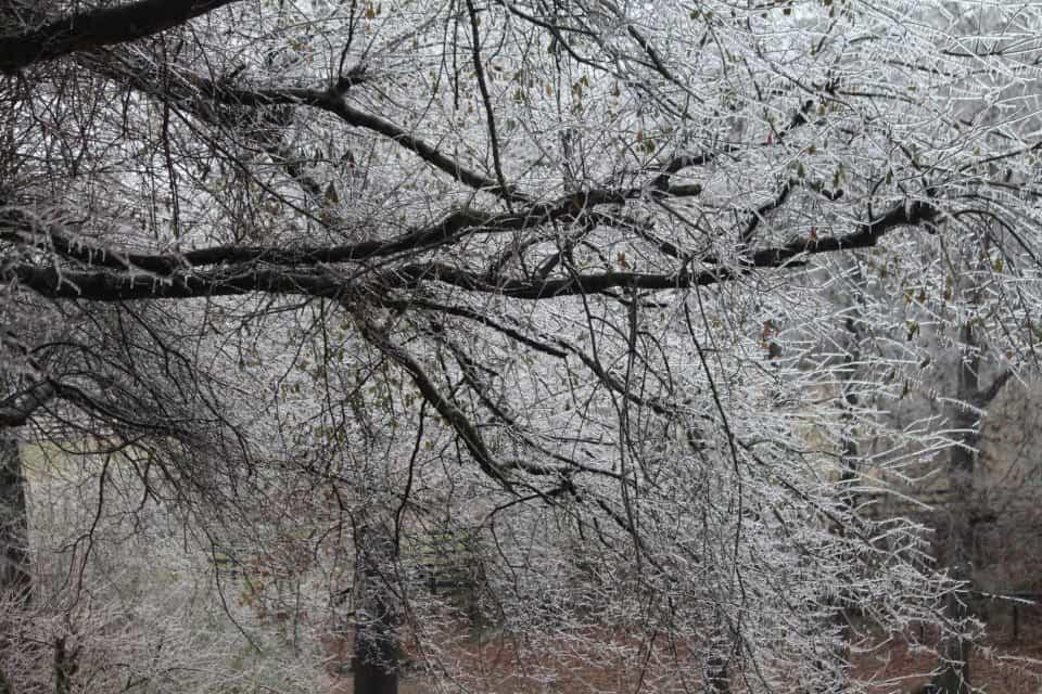 ice-storm20150216-17_20150217_016