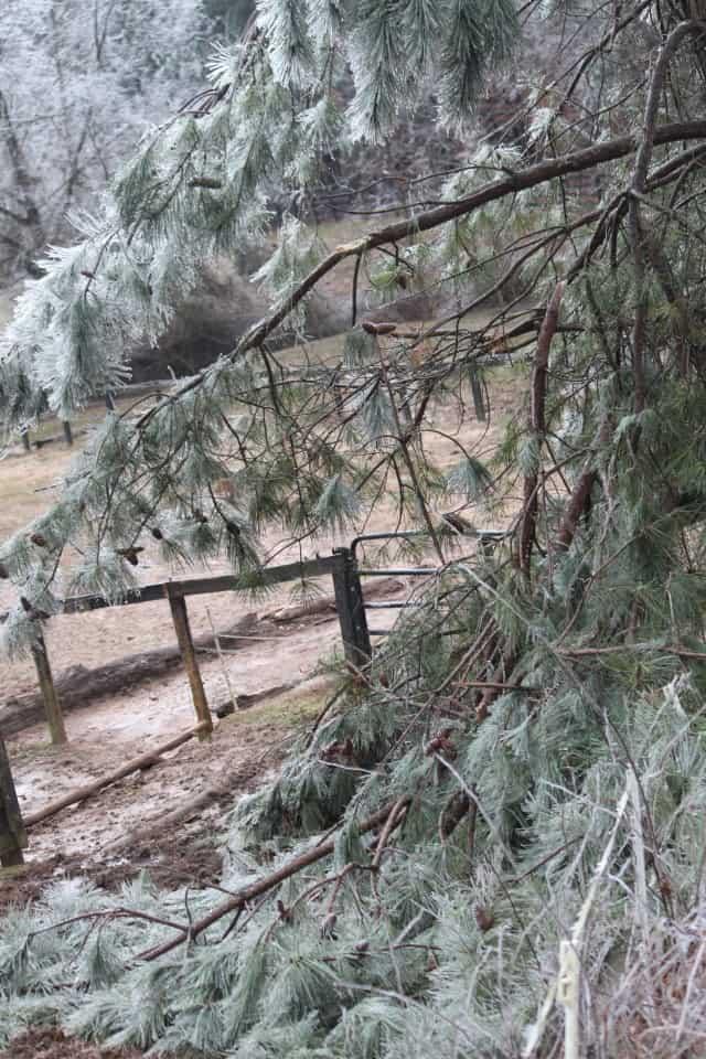 ice-storm20150216-17_20150217_025