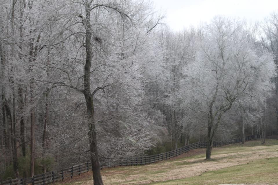 ice-storm20150216-17_20150217_031