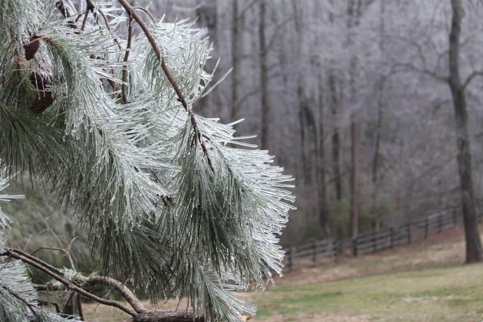ice-storm20150216-17_20150217_032