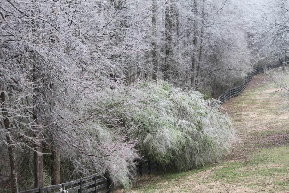 ice-storm20150216-17_20150217_041