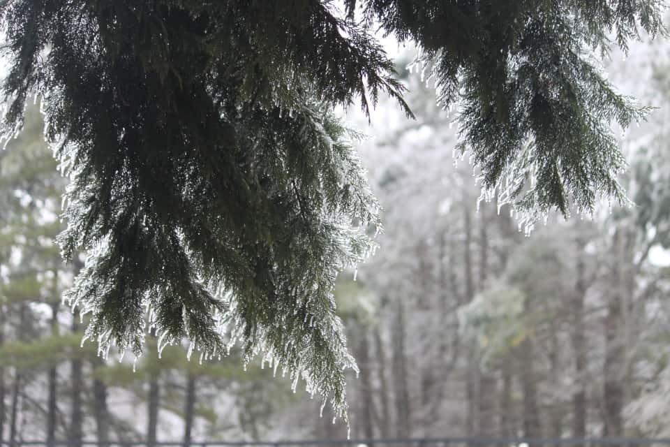 ice-storm20150216-17_20150217_042