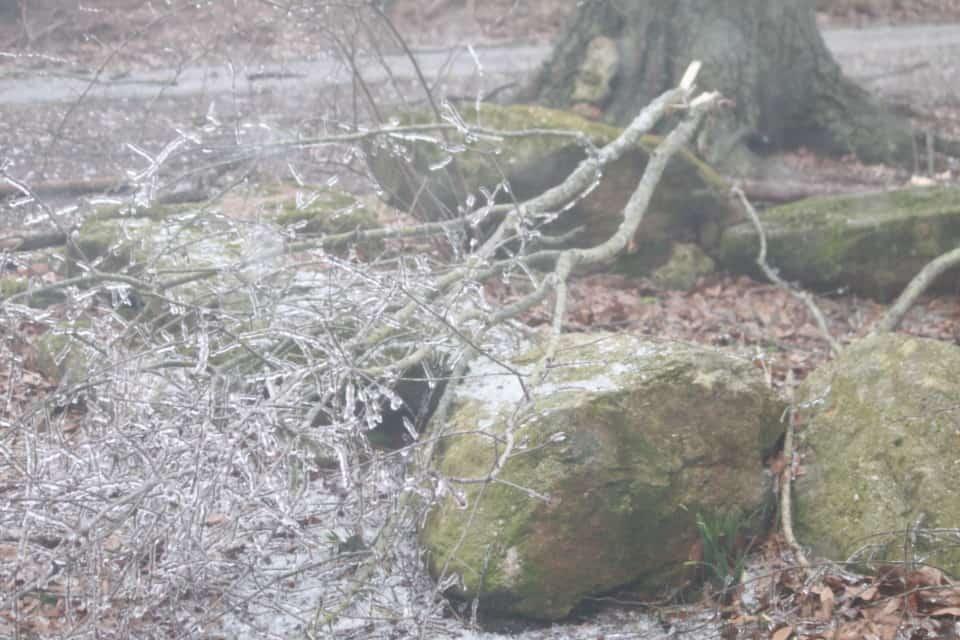 ice-storm20150216-17_20150217_046