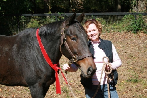 Jodi\'s first horse is an off-the-track Thoroughbred