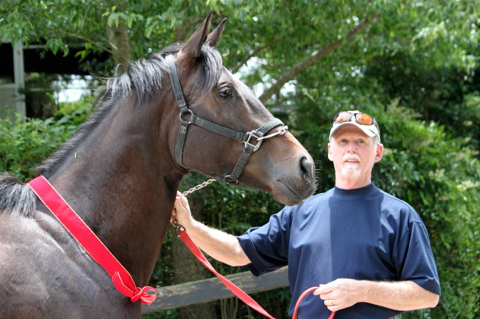 Former Thoroughbred horse for sale Mimi's Ava meets her new dad.