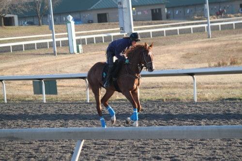 running-tall_20101108_035
