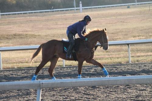 running-tall_20101108_038