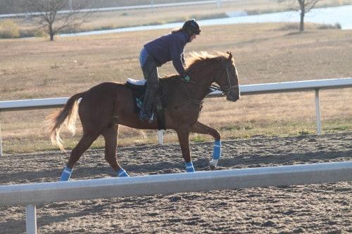 running-tall_20101108_039