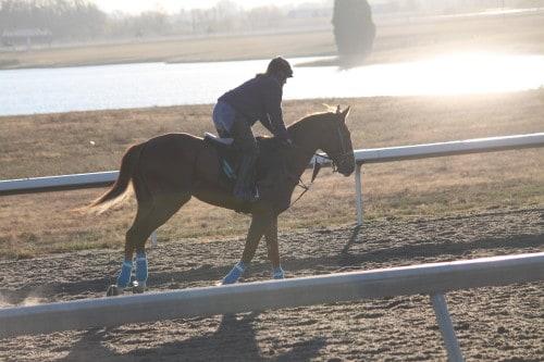 running-tall_20101108_040