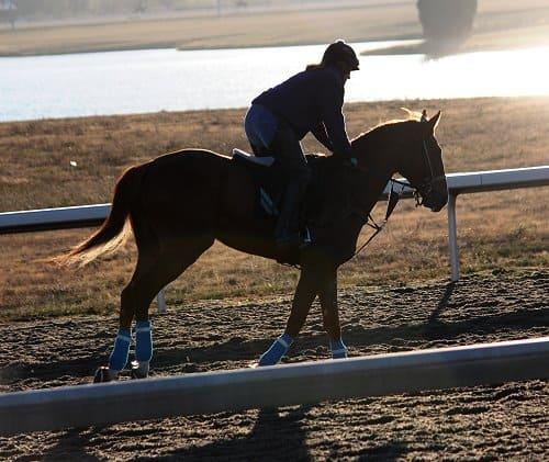 running-tall_20101108_041