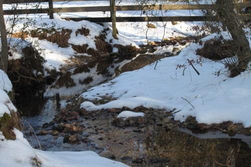 snow-farm_20110115_016