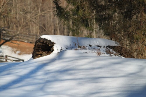 A cross country jump log covered in snow in pasture 11