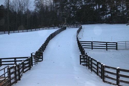Bits & Bytes Farm in the snow