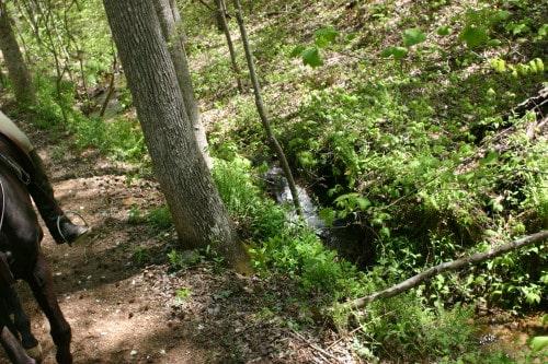 trail-ride-garland-mt_20110417_011
