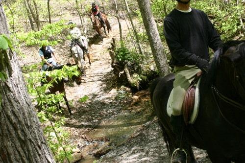 trail-ride-garland-mt_20110417_013
