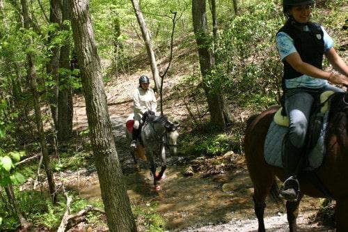 trail-ride-garland-mt_20110417_016