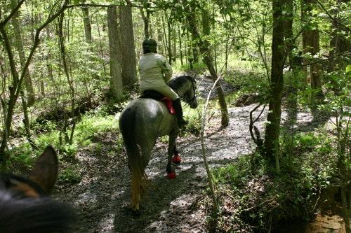 trail-ride-garland-mt_20110417_022