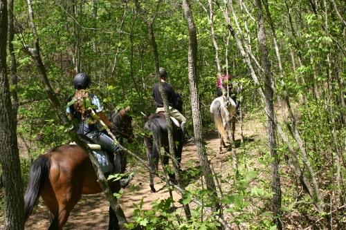 trail-ride-garland-mt_20110417_023