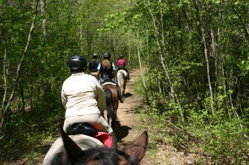 trail-ride-garland-mt_20110417_024