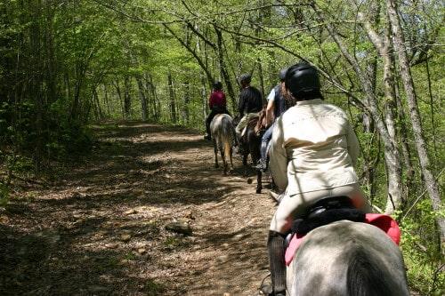 trail-ride-garland-mt_20110417_026