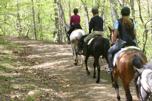 trail-ride-garland-mt_20110417_027