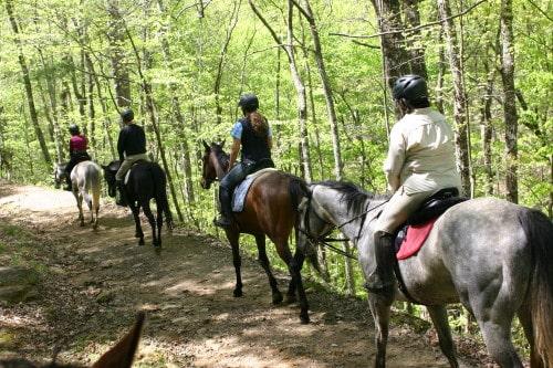 trail-ride-garland-mt_20110417_030