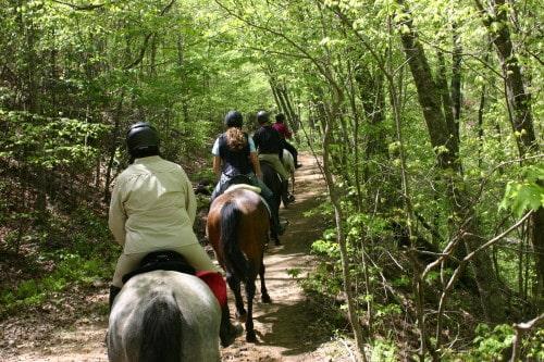trail-ride-garland-mt_20110417_031