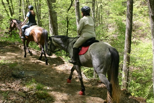 trail-ride-garland-mt_20110417_032
