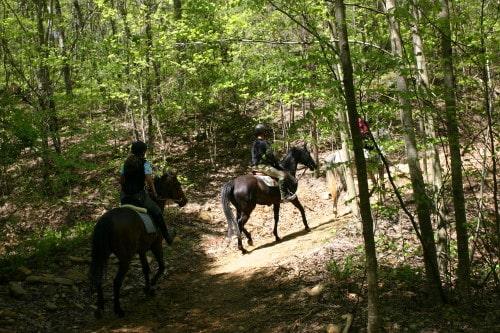 trail-ride-garland-mt_20110417_033