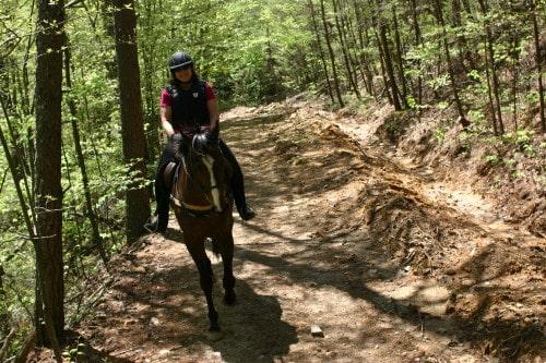 trail-ride-garland-mt_20110417_034
