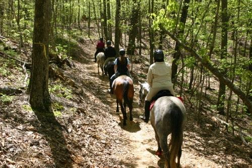 trail-ride-garland-mt_20110417_035