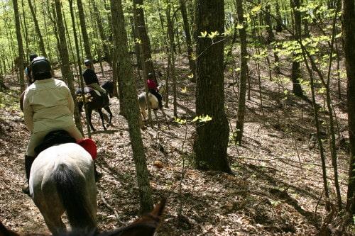 trail-ride-garland-mt_20110417_036