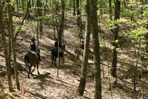trail-ride-garland-mt_20110417_037