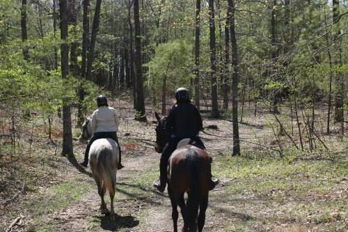 trail-ride_20110402_034