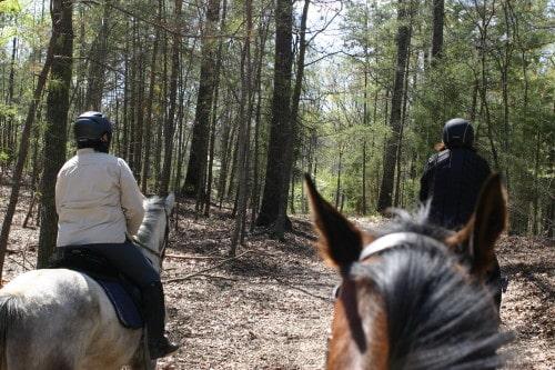 trail-ride_20110402_035