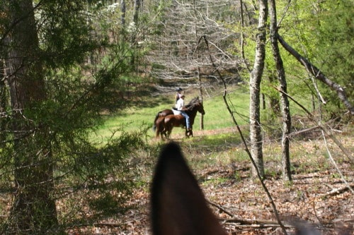 trail-ride_20110402_036