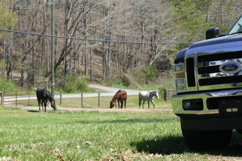 trail-ride_20110402_076