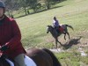 trail-ride_20100327_061