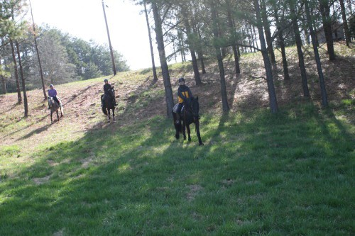 trail-ride_20100327_005