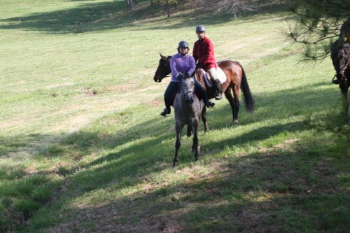 trail-ride_20100327_009