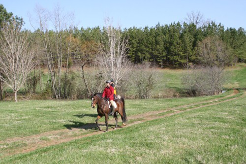 trail-ride_20100327_017