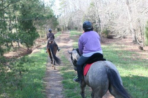 trail-ride_20100327_018