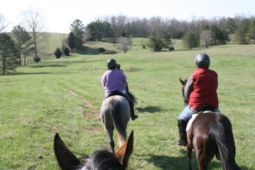 trail-ride_20100327_021