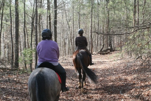 trail-ride_20100327_022