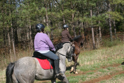 trail-ride_20100327_039
