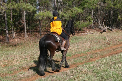 trail-ride_20100327_040