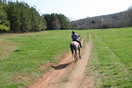 trail-ride_20100327_042