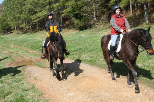 trail-ride_20100327_044