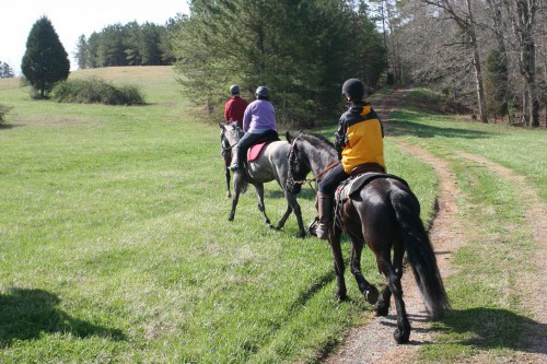 trail-ride_20100327_046
