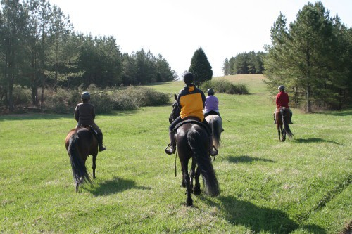 trail-ride_20100327_048